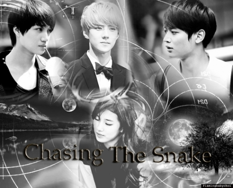 chasing the snake
