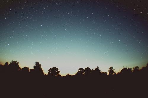 Under The Thousand Stars