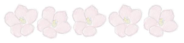 tumblr_static_sakura_line1
